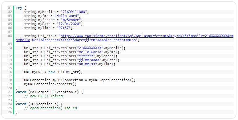 API SMS - Code Java